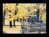 1011-Couleurs automne-33