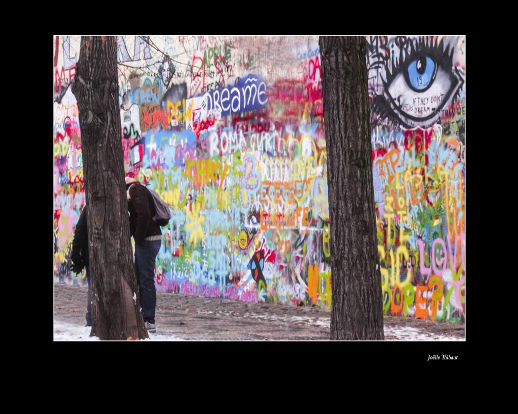 15- Le mur de la liberte - Joëlle Thibaut