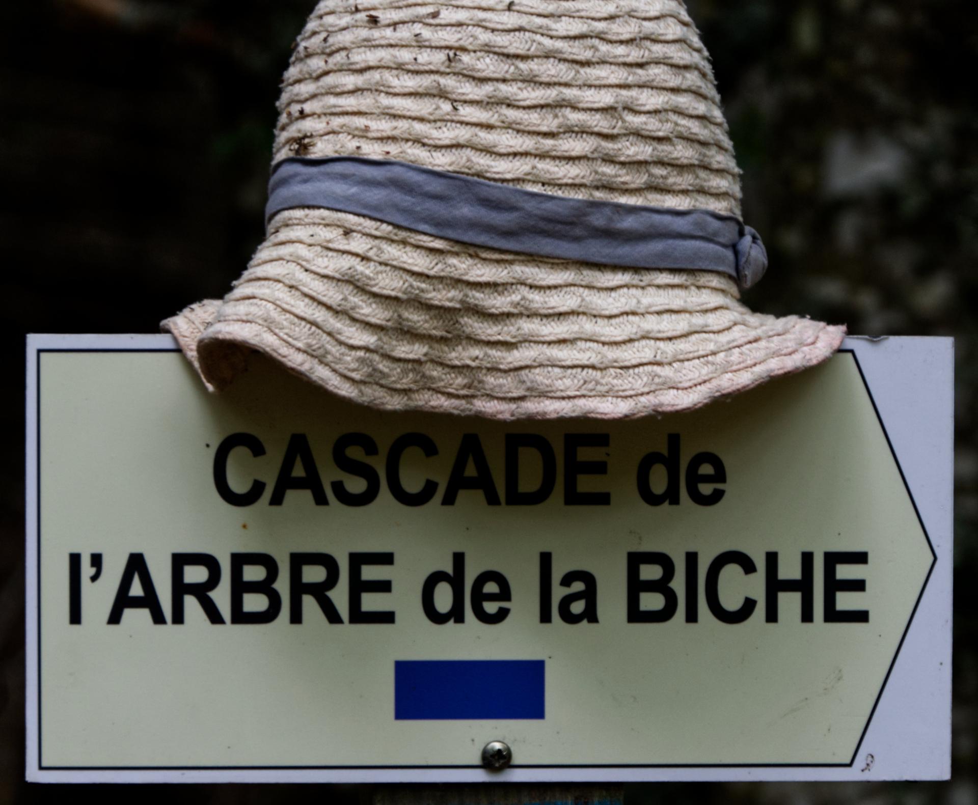 Alain Lecomte;